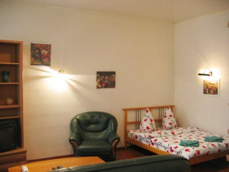 Appartement Deluxe Mayakovskogo 14