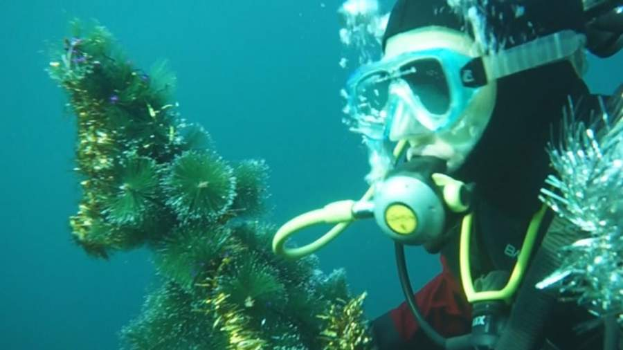 Divers had Set the Christmas Tree Underwater of the Baikal Lake